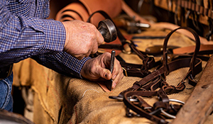 Bridle Making Workshop